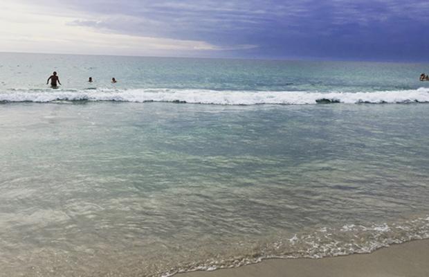 Australian Shores